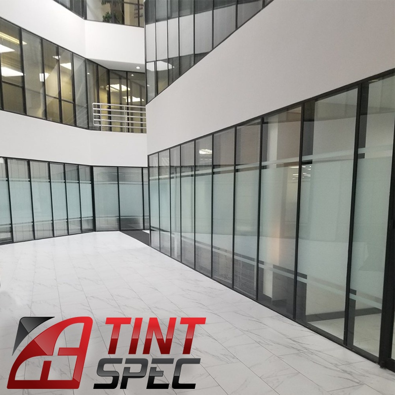 Contact Tint Spec in Dallas Fort Worth